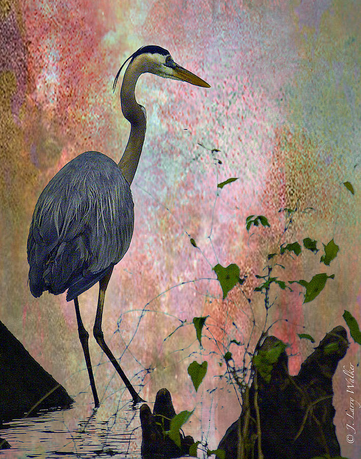Great Blue Heron Among Cypress Knees Digital Art