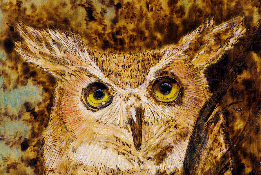Great Horned Owl Mixed Media  - Great Horned Owl Fine Art Print
