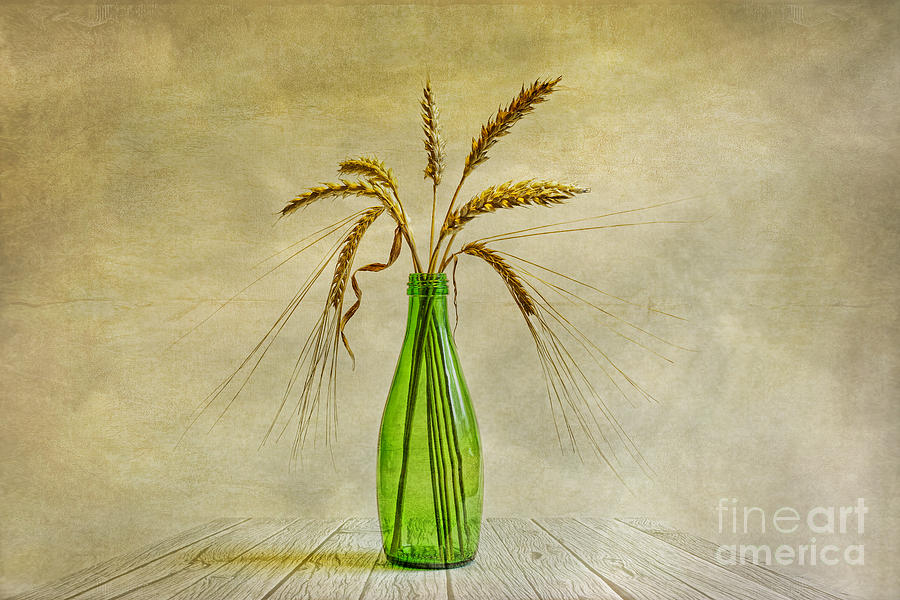 Green Bottle Photograph  - Green Bottle Fine Art Print