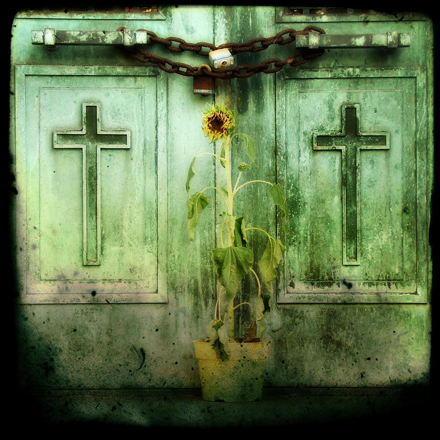 Green Doors Photograph  - Green Doors Fine Art Print