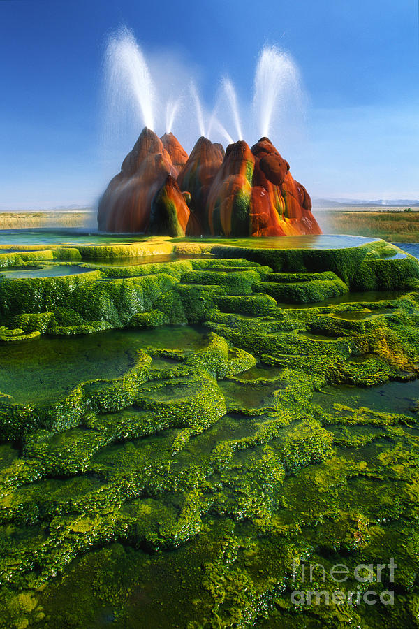 Green Fly Geyser Photograph  - Green Fly Geyser Fine Art Print