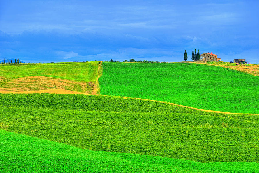 Green Green Grass Of Home Photograph