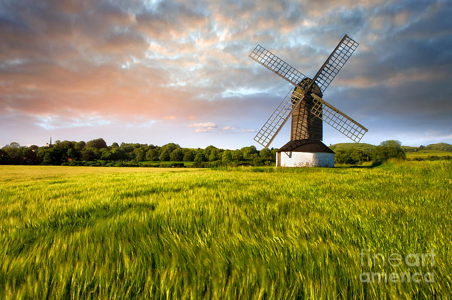 Green Ocean pitstone Windmill Photograph