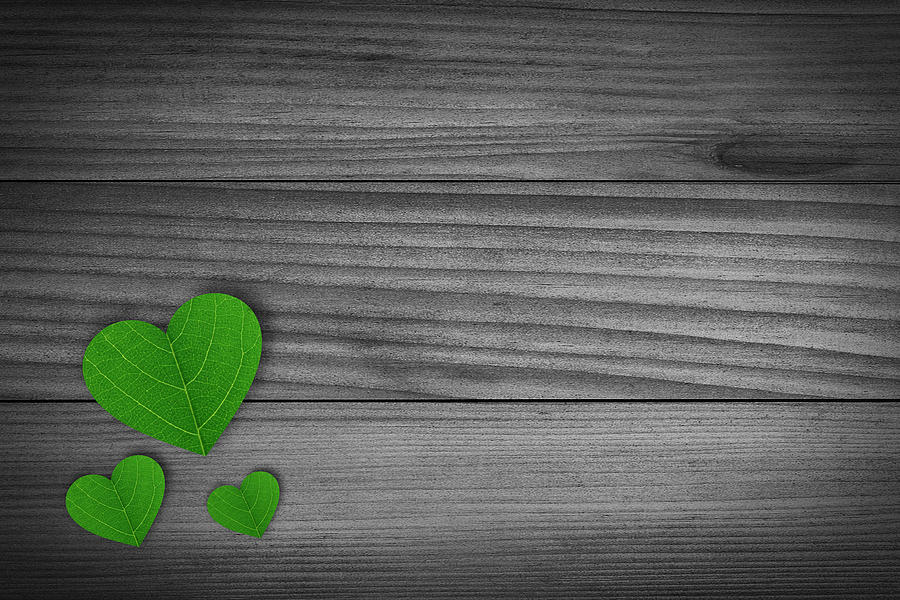 Green Pedal Shaped Hearts Photograph