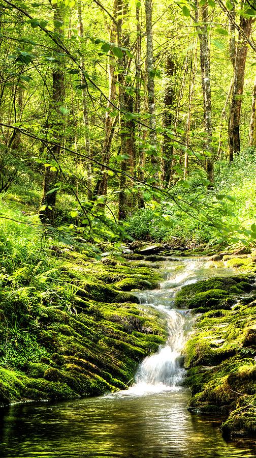 Green River No2 Photograph