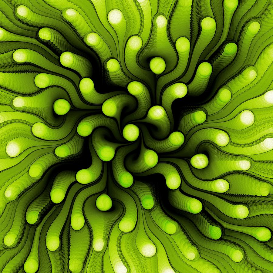 Green Sea Anemone Digital Art