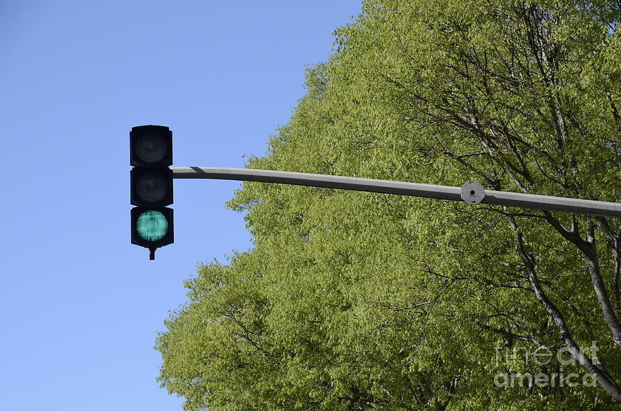 Green Traffic Light By Trees Photograph