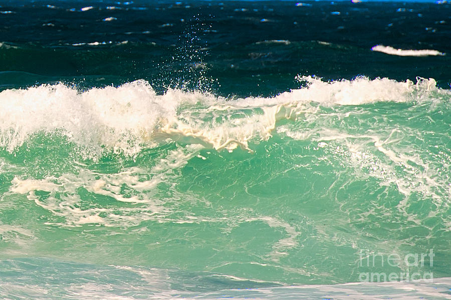 Green Wave Pacific Grove Ca  Photograph