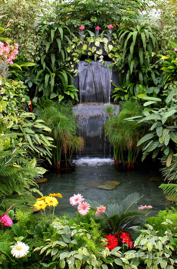Greenhouse Garden Waterfall Photograph