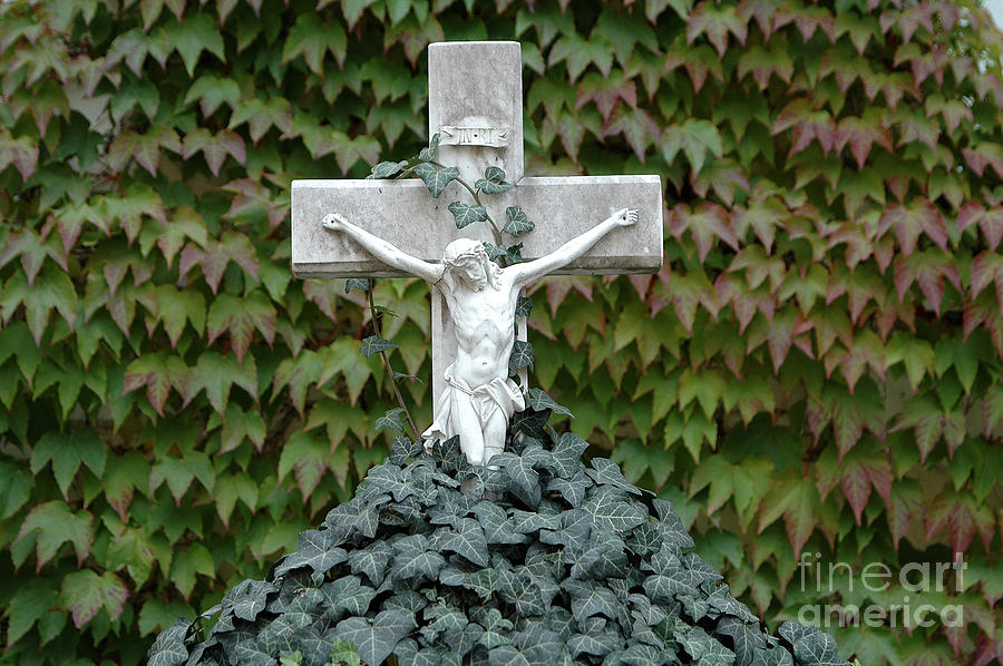 Grey Marmoreal Cross With Trailing Ivy Photograph
