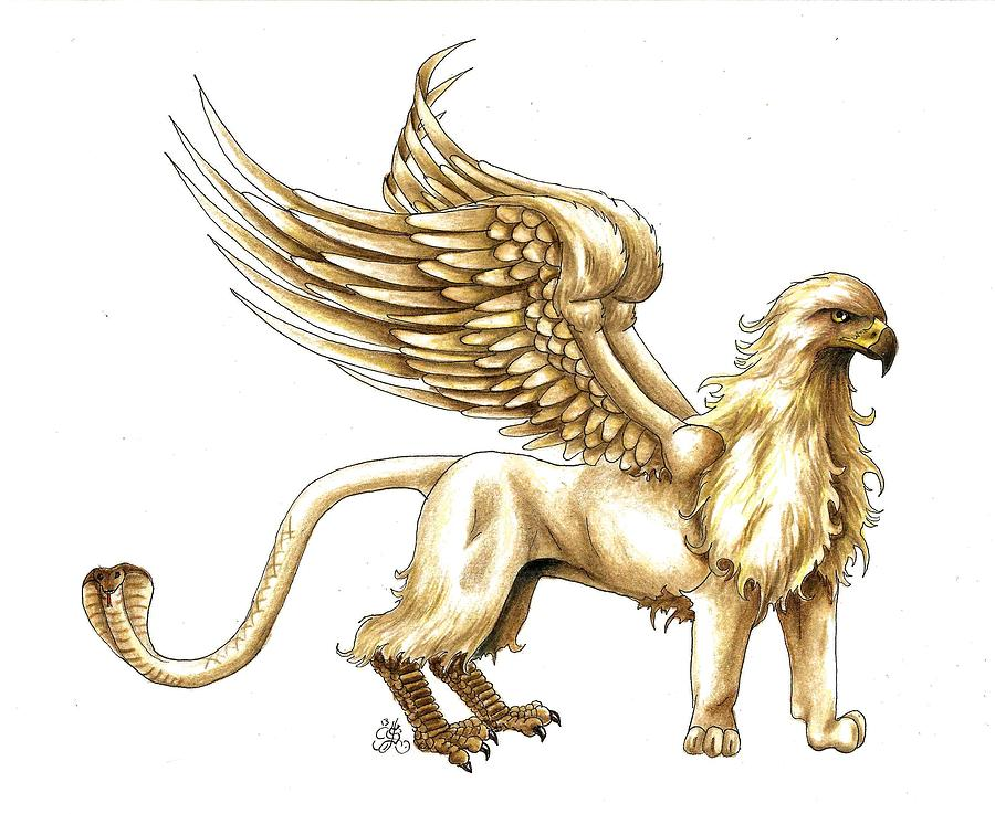 Mythical griffin drawings bing images for The griffin