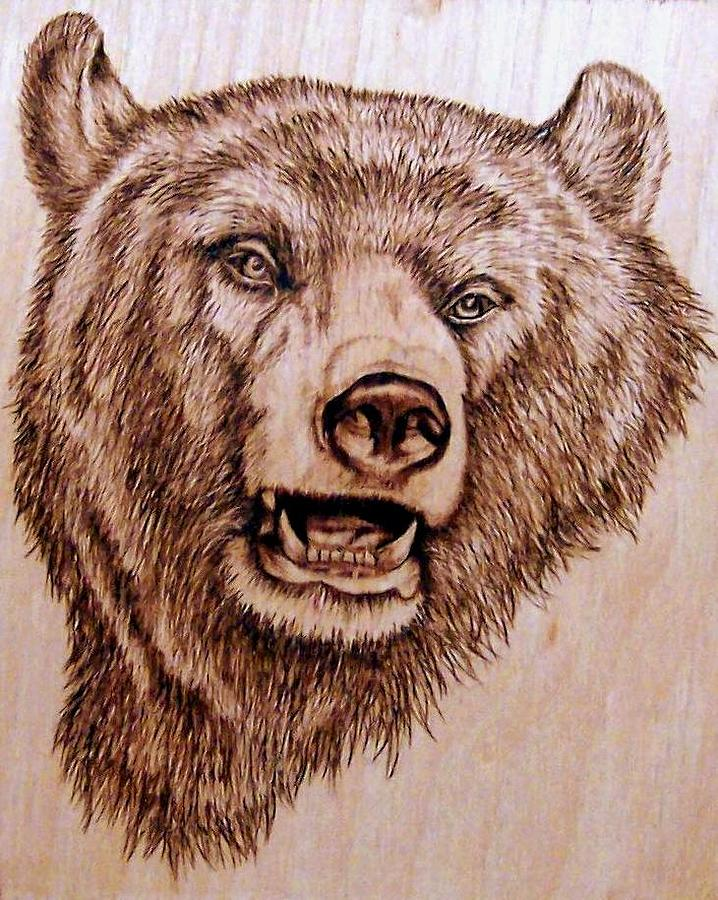Grizzly Bear Pyrography by Danette Smith