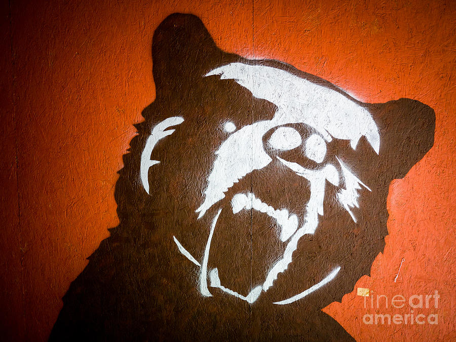 Grizzly Bear Graffiti Photograph  - Grizzly Bear Graffiti Fine Art Print