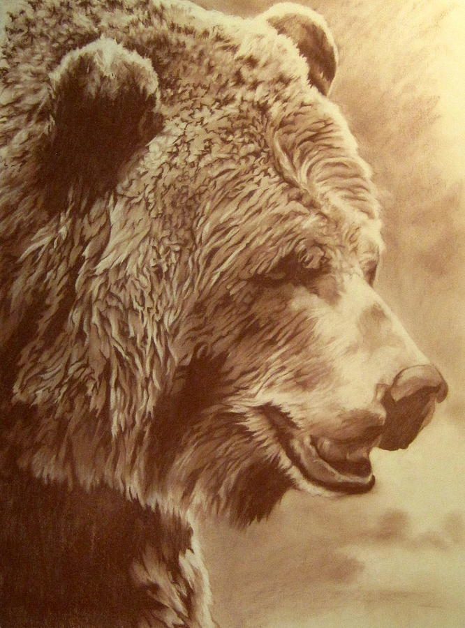 Grizzly Bear Pastel