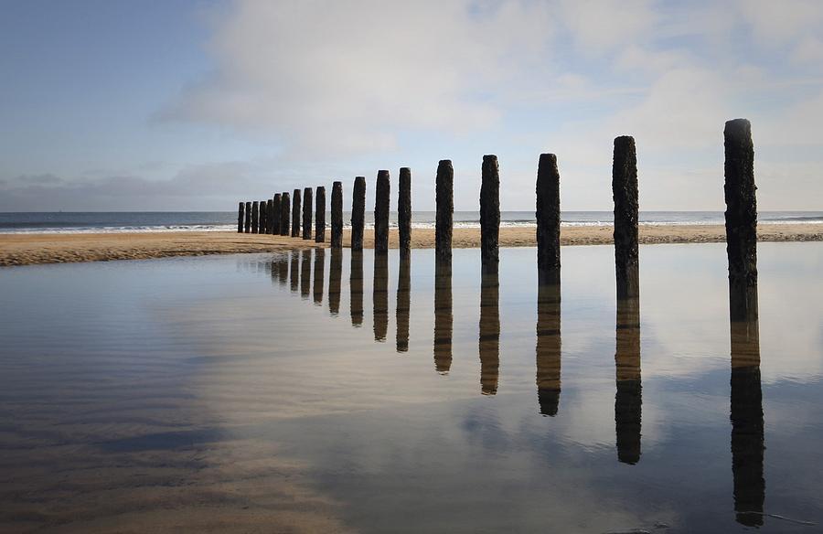 Groynes Blyth Northumberland Photograph
