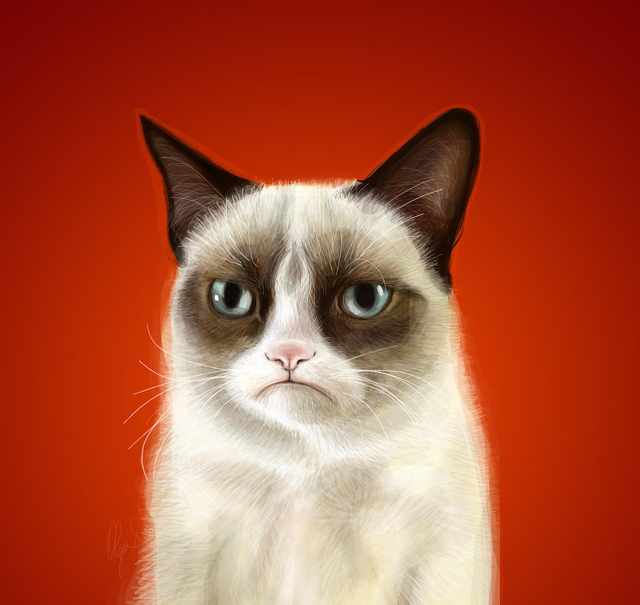 Grumpy Digital Art - Grumpy Cat by Olga Shvartsur