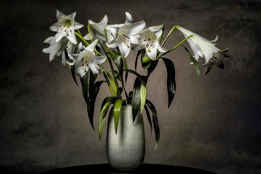 Grunge Lilies Photograph