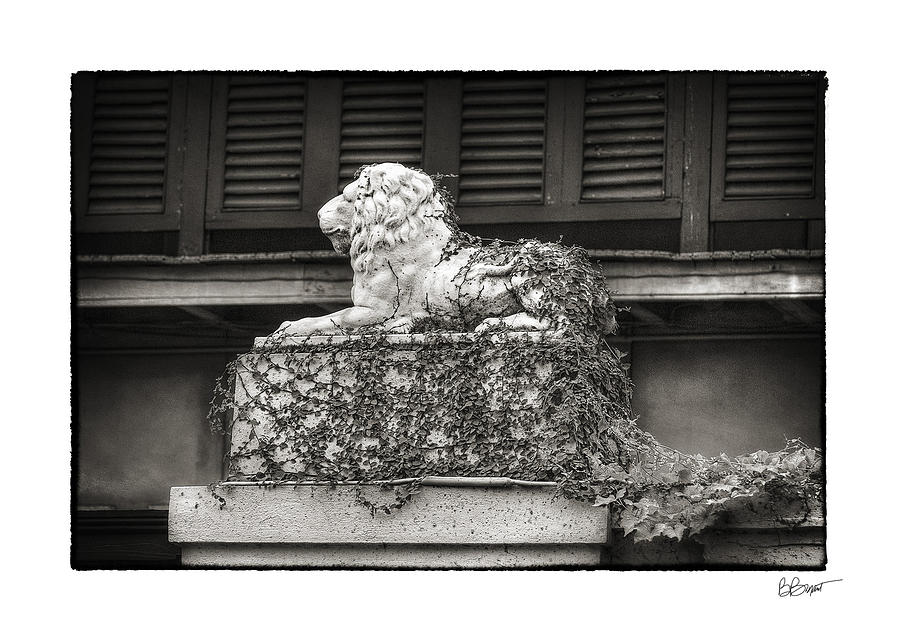 Guardian In Black And White Photograph