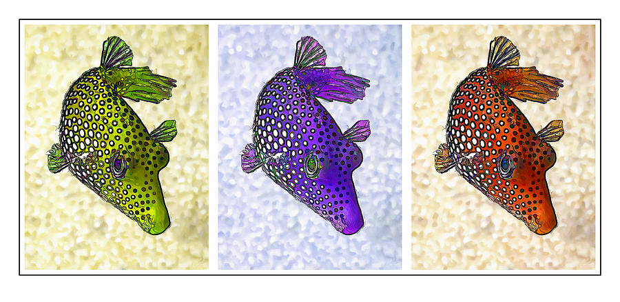 Guinea Fowl Puffer Fish Triptych Digital Art