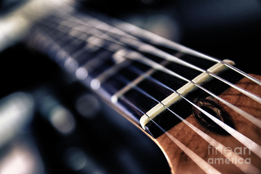 Guitar Strings Photograph