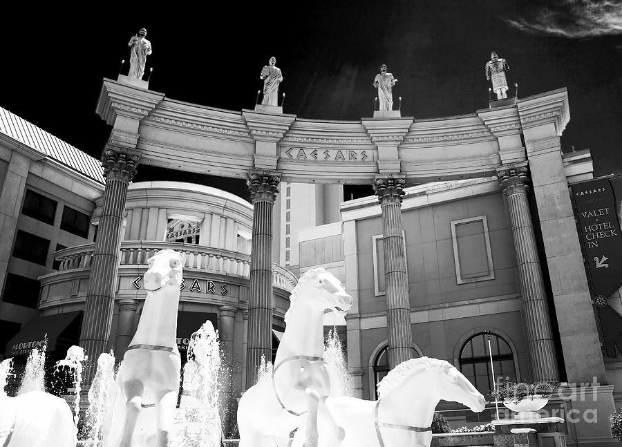 John Rizzuto Photograph - Hail Caesars by John Rizzuto