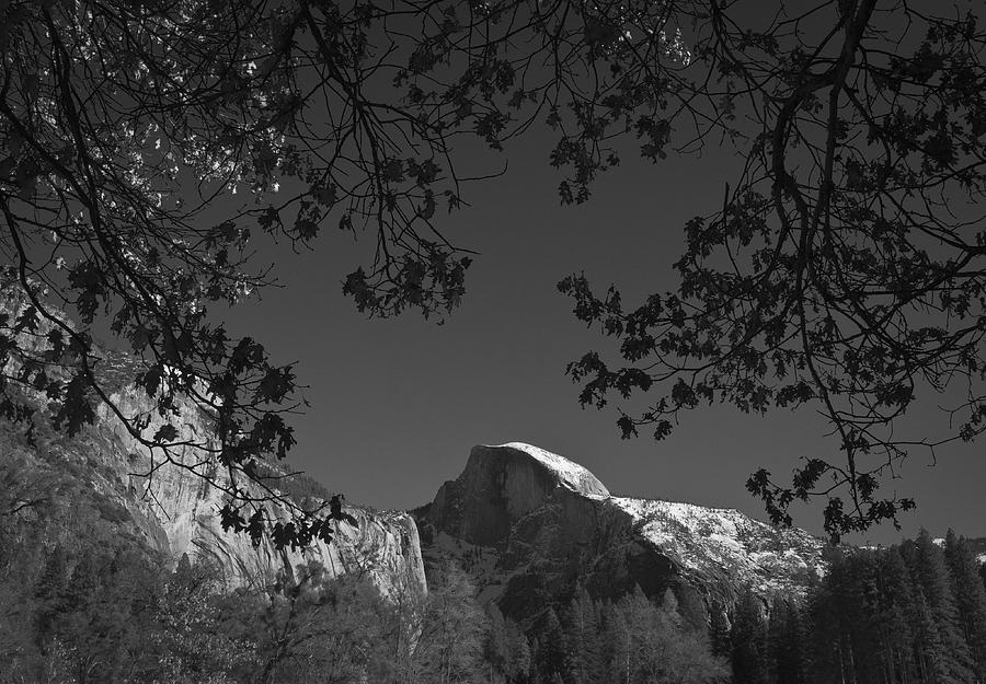 Half Dome Full Glory - Landscape Photos Photograph  - Half Dome Full Glory - Landscape Photos Fine Art Print