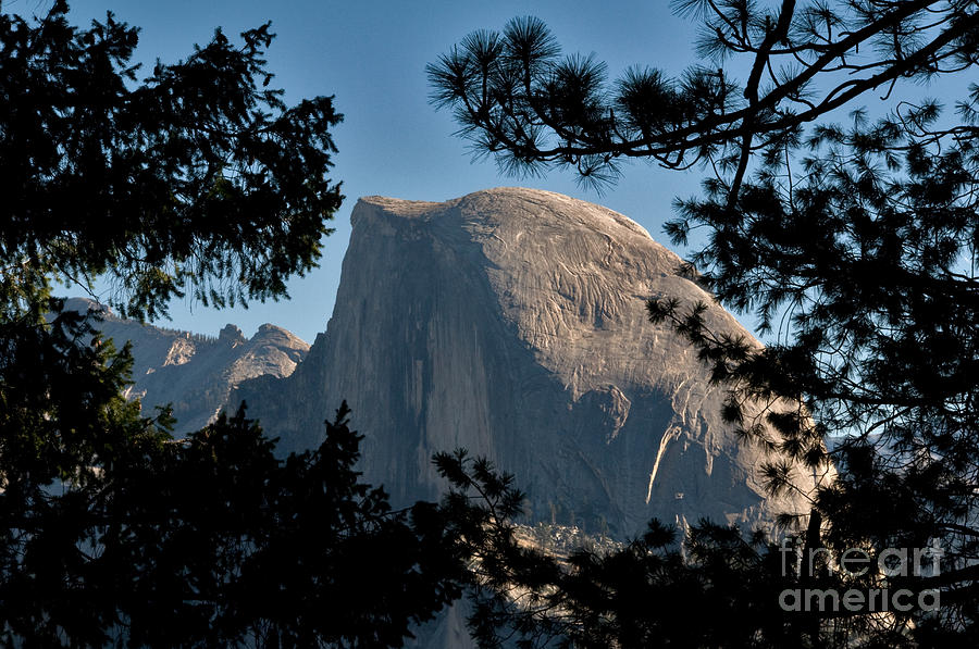 Half Dome, Yosemite Np Photograph