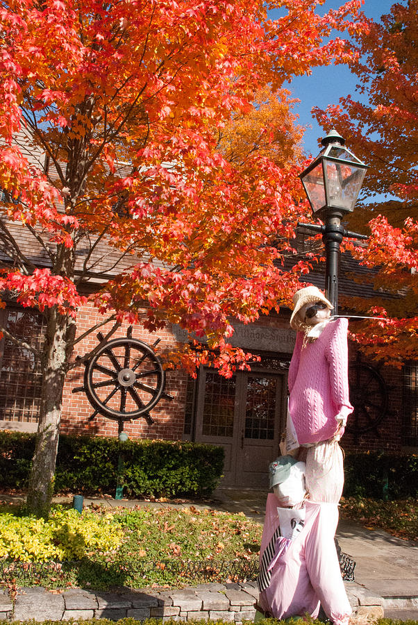 Hallloween Scarecrow And Red Maples In The Fall In Essex Village Connecticut Photograph