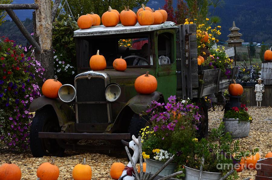 Halloween 1 Photograph