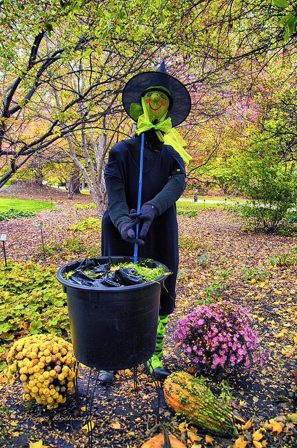 Halloween Witch Photograph  - Halloween Witch Fine Art Print