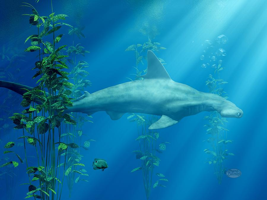 Hammerhead Among The Seaweed Digital Art  - Hammerhead Among The Seaweed Fine Art Print
