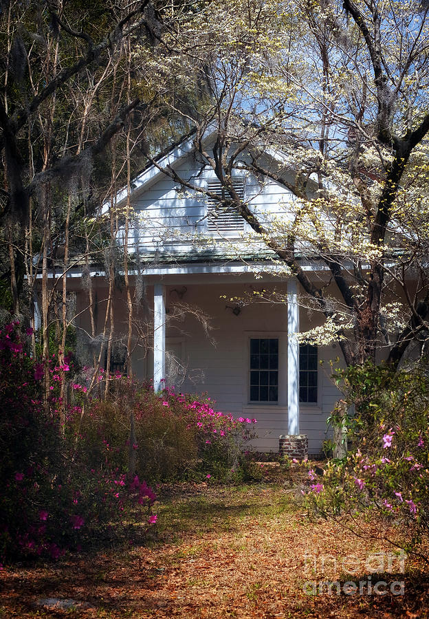 Hampton Slave Quarters Photograph