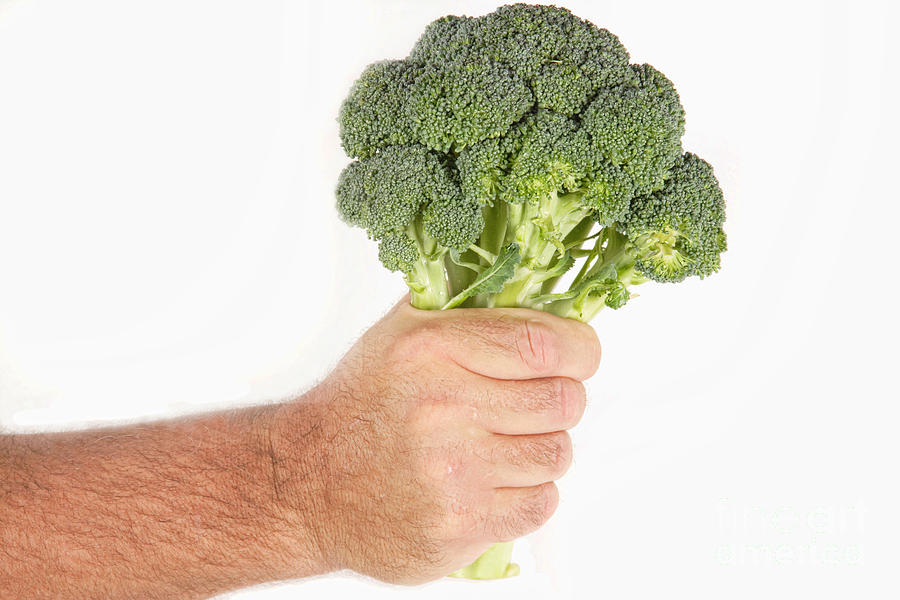 Hand Holding Broccoli Photograph  - Hand Holding Broccoli Fine Art Print