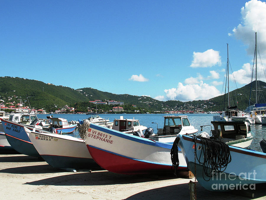 Hanging Out In St Thomas Photograph  - Hanging Out In St Thomas Fine Art Print