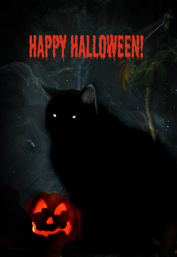Happy Halloween Photograph - Happy Halloween Black Cat by Michelle Frizzell-Thompson