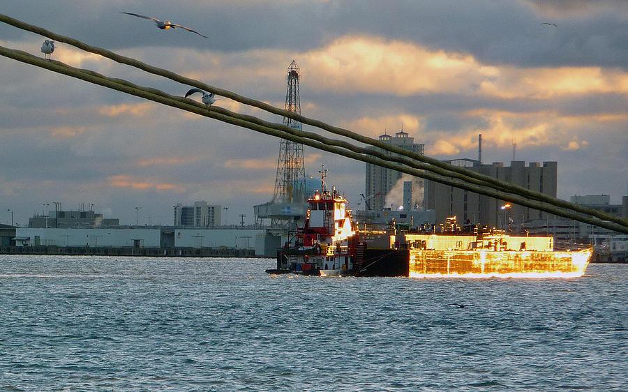Tug Photograph - Harbor Life by John Collins