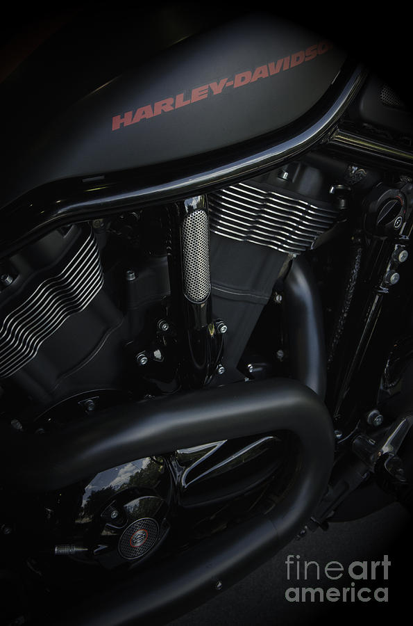 Harley Davidson Black Photograph
