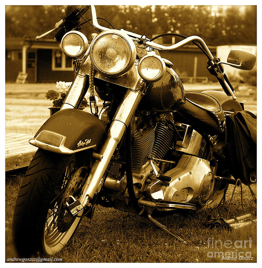 Harley - Davidson Model November Rain. Photograph 
