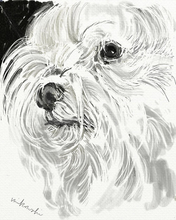 Harley The Maltese Jewelry  - Harley The Maltese Fine Art Print