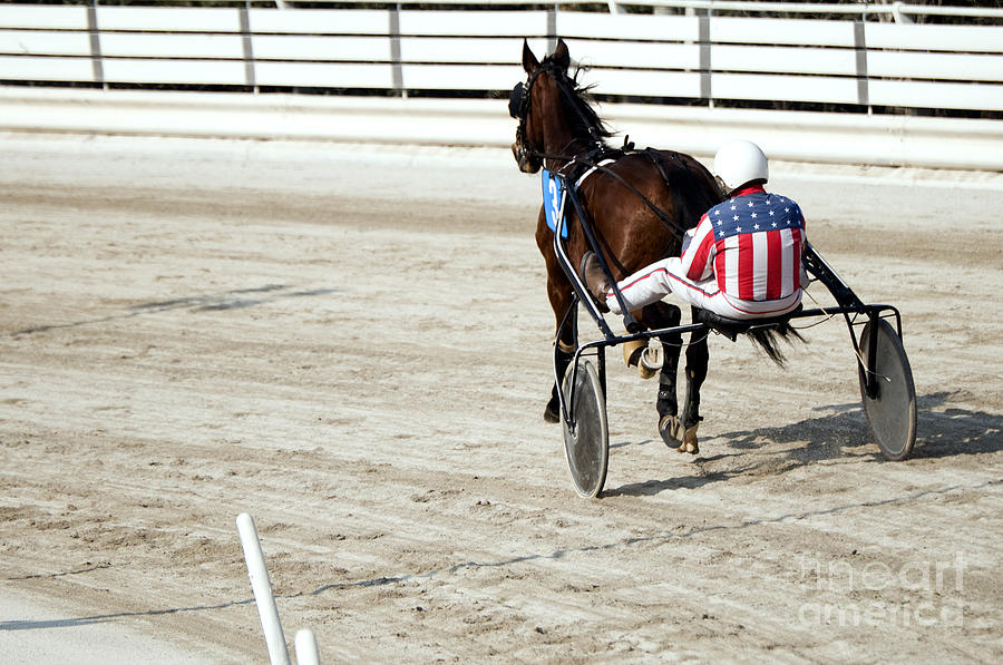 Harness Racing Photograph