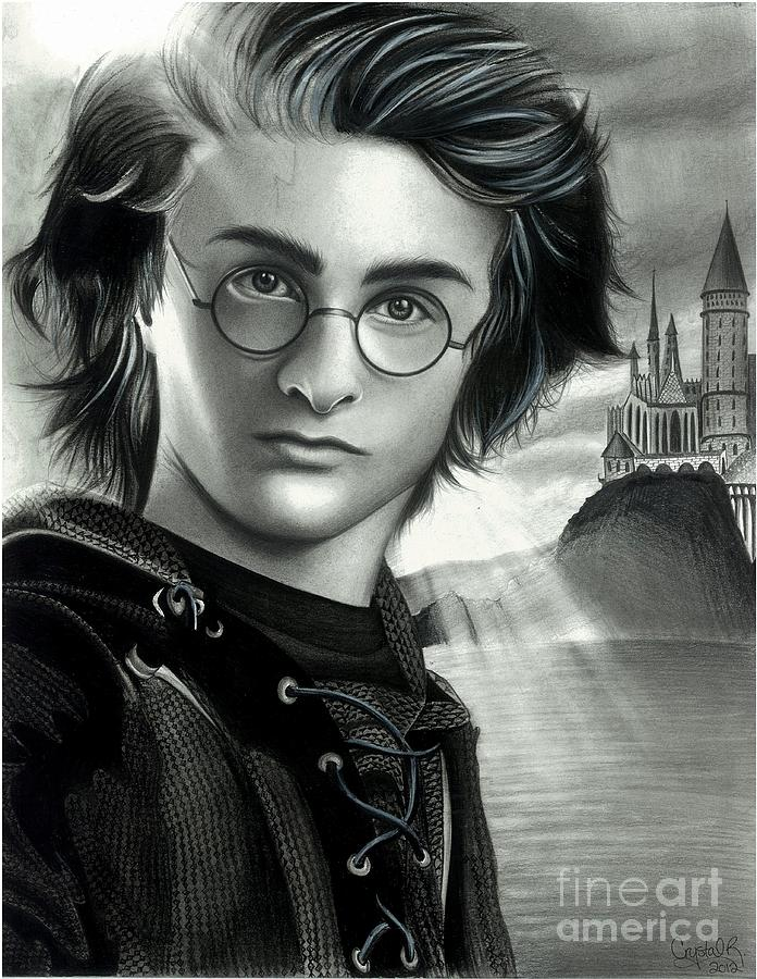 Harry Potter Drawing - Harry Potter And The Goblet Of Fire by Crystal Rosene