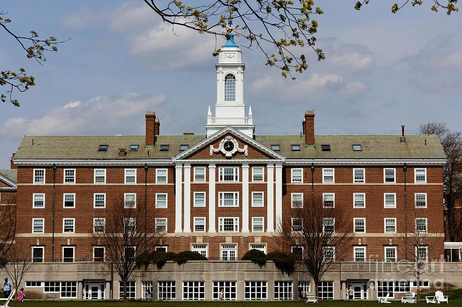 Harvard gambling palace casino review