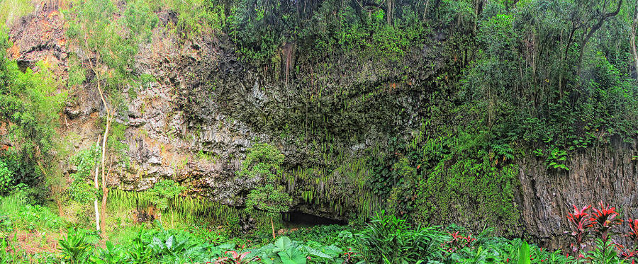 Fern Grotto Photograph - Hawaii Fern Grotto by C H Apperson