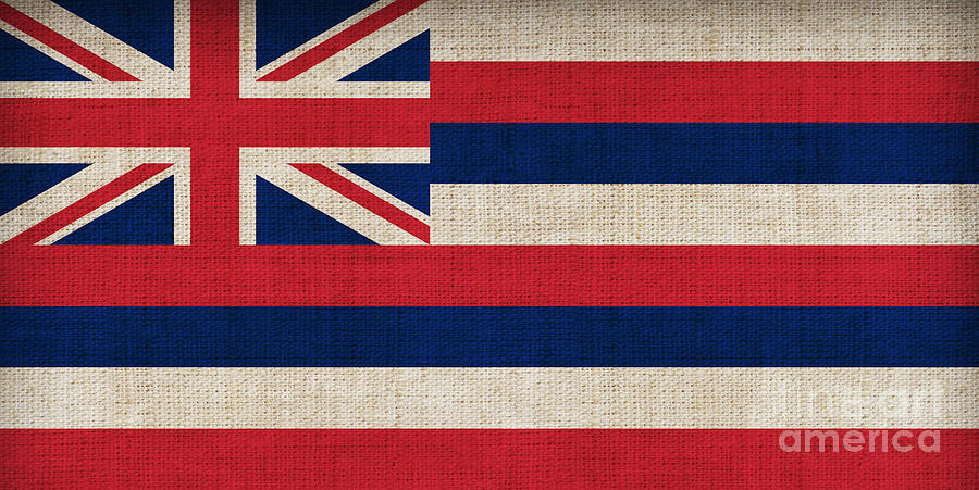 Hawaii Painting - Hawaii State Flag  by Pixel Chimp
