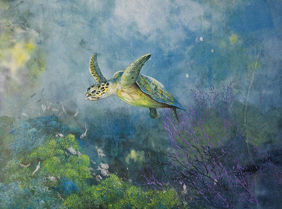 Hawkbill Turtle Feeding On Sponges Mixed Media