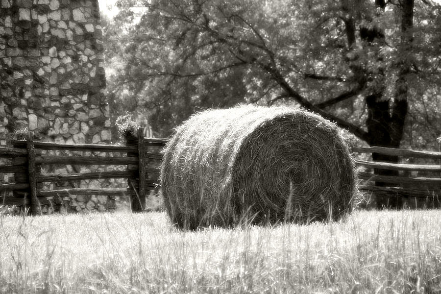 Hay Bale In A Farm Field Photograph  - Hay Bale In A Farm Field Fine Art Print