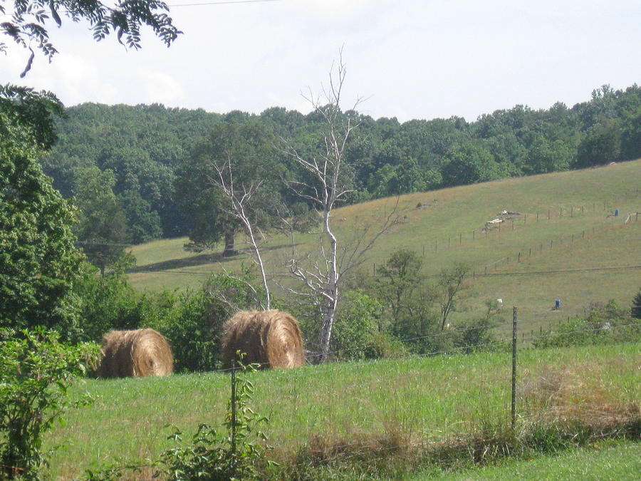 Tennessee Photograph - Hay Bales by Amanda Reigel