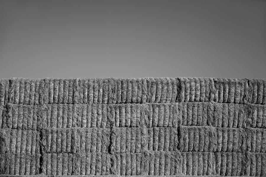 Black & White Photograph - Hay by Peter Tellone