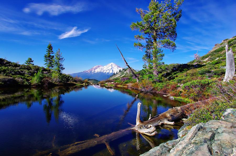Heart Lake And Mt Shasta Reflection Photograph