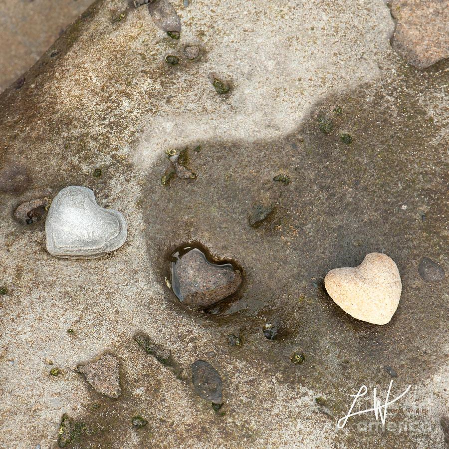 Heart Rock Love Photograph